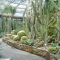 botanicheskij-sad-berlina-10