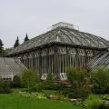botanicheskij-sad-berlina-17