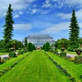 botanicheskij-sad-berlina-5