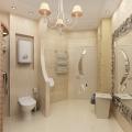 dizajn-sovmeshhennoj-vannoj-komnaty-stoit-li-soedinyat-vannuyu-komnatu-i-tualet-16