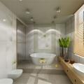 dizajn-sovmeshhennoj-vannoj-komnaty-stoit-li-soedinyat-vannuyu-komnatu-i-tualet-2