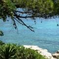 dostoprimechatel-nosti-horvatii-ostrov-lokrum-21