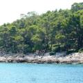 dostoprimechatel-nosti-horvatii-ostrov-lokrum-25