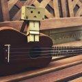 gavajskaya-gitara-ukulele-stan-muzy-kantom-13