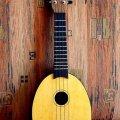 gavajskaya-gitara-ukulele-stan-muzy-kantom-5
