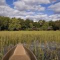 gostinitsa-eagle-island-camp-dlya-lyubitelej-safari-16