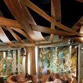 ресторана Ikibana в стиле фьюжн 10