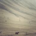 minimalizm-foto-datskogo-fotografa-kima-holtermanda-1
