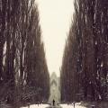 minimalizm-foto-datskogo-fotografa-kima-holtermanda-27