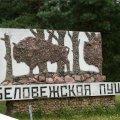 natsional-ny-j-park-belovezhskaya-pushha-dostoprimechatel-nosti-belarusi-12