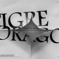 poster-s-kitajskoj-kalligrafiej-ot-albert-cheng-syun-tang-6