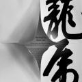 poster-s-kitajskoj-kalligrafiej-ot-albert-cheng-syun-tang-7
