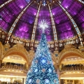 rozhdestvenskie-ukrasheniya-gorodov-mira-christmas-tree-at-galeries-lafayette-paris