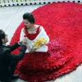 красивая свадьба в мире или миллион алых роз 4