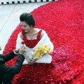 красивая свадьба в мире или миллион алых роз 9