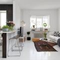 skandinavskij-stil-na-primere-kvartiry-iz-geteborga-1