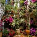 sozdaem-visyachie-sady-na-svoem-balkone-ili-terrase-3