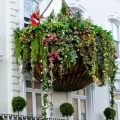 sozdaem-visyachie-sady-na-svoem-balkone-ili-terrase-8