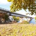 varvarovskij-razvodnoj-most-dostoprimechatel-nost-nikolaeva-19