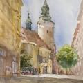 hudozhnik-akvarelist-minh-dam-12