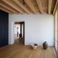 zagorodny-j-dom-ot-studii-mds-architectural-studio-4