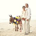 zhenshhina-svadebny-j-fotograf-elizabeth-lloyd-20