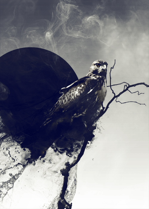 Мрачный проект Dark positive от Christopher Hewitt