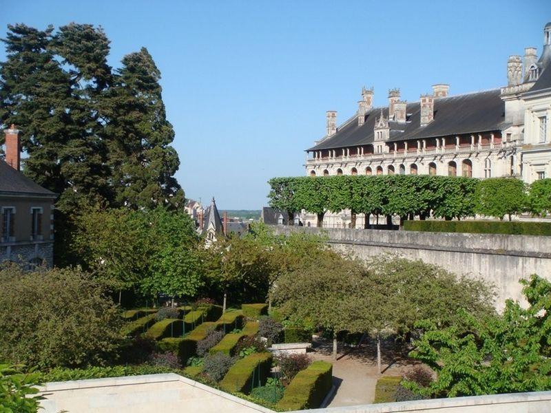 Блуа  - замки Франции 10