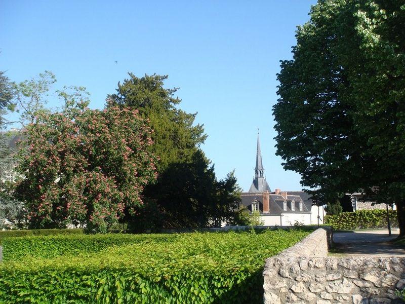 Блуа  - замки Франции 9