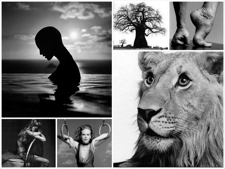 Лучшие фотографы мира - Patrick Demarchelier