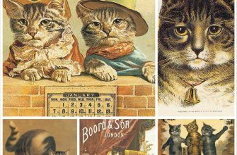 Винтажные открытки с котами