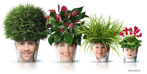 Прикольный дизайн цветочных горшков
