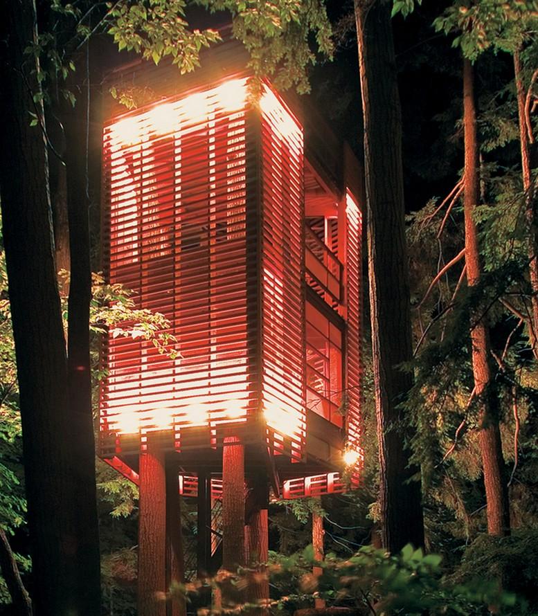 Дом на дереве в лесу неподалеку озера Мускоке