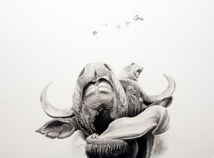 Черно белые рисунки от Martin Kalanda