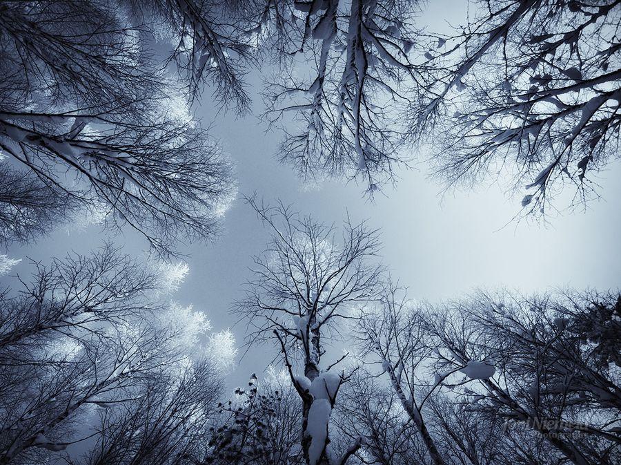 Красивые фото пейзажи финского фотографа Joni Niemela