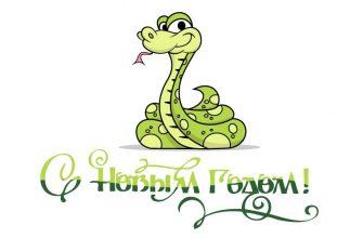 Поздравляю с Новым Годом - 2013 - годом Змеи!