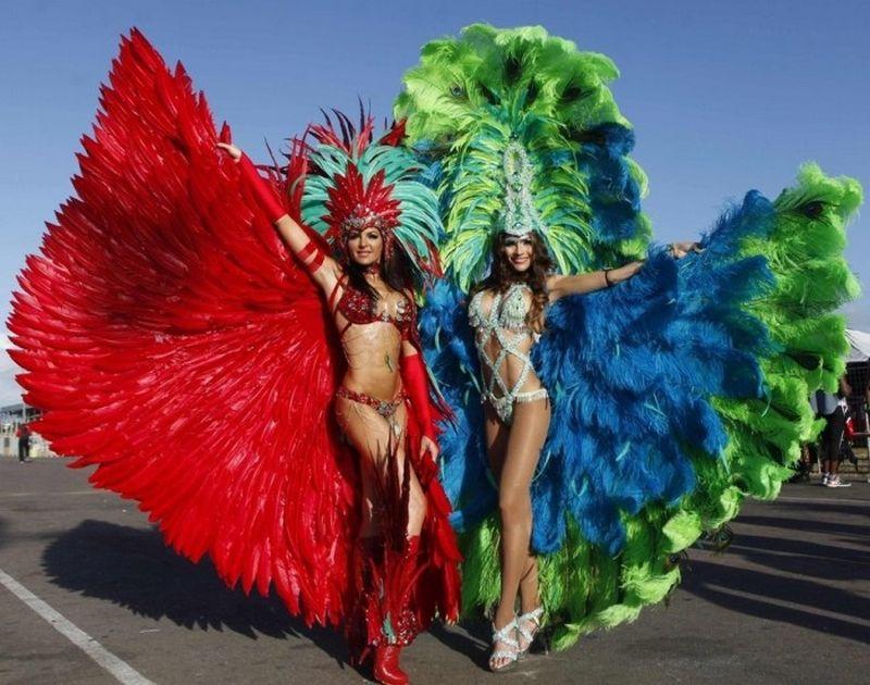Яркий карнавал в Рио 2013 года
