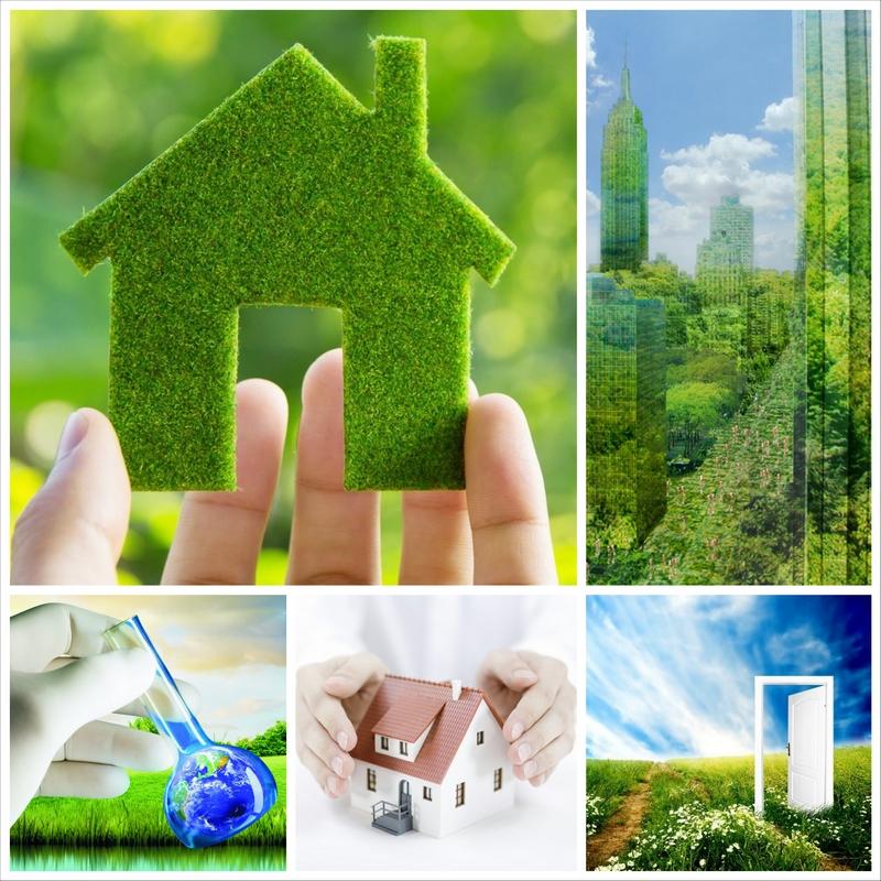 Экология нашего дома