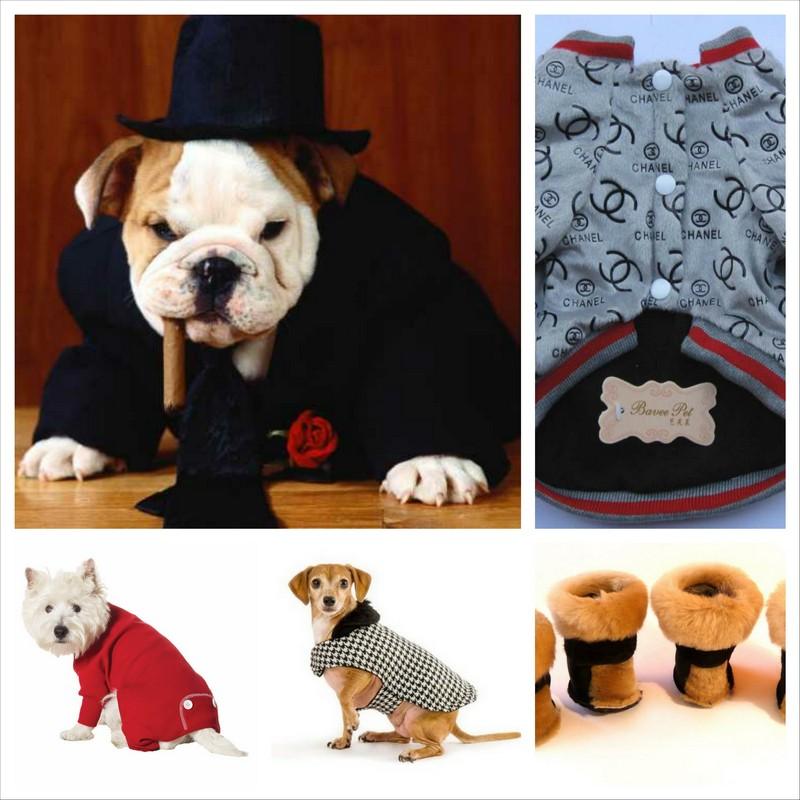 Теплый комбинезон для собак - особая забота о четвероногих друзьях 8