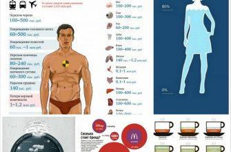Визуальные коммуникации в дизайне инфографики