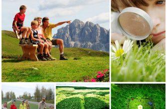 Экологическое воспитание детей 8