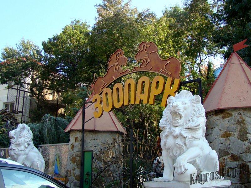 зоопарк Куда пойти с ребенком
