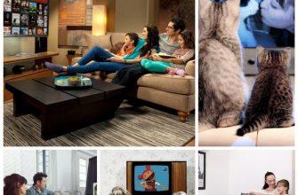 Как правильно смотреть телевизор