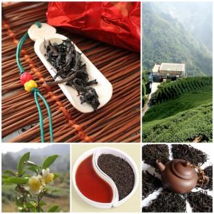 Позвольте представить: лучший китайский чай