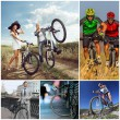 Какой велосипед лучше выбрать мужчине