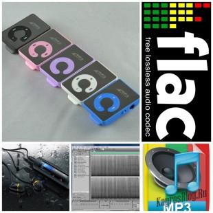 Как конвертировать FLAC в MP3 без потери качества