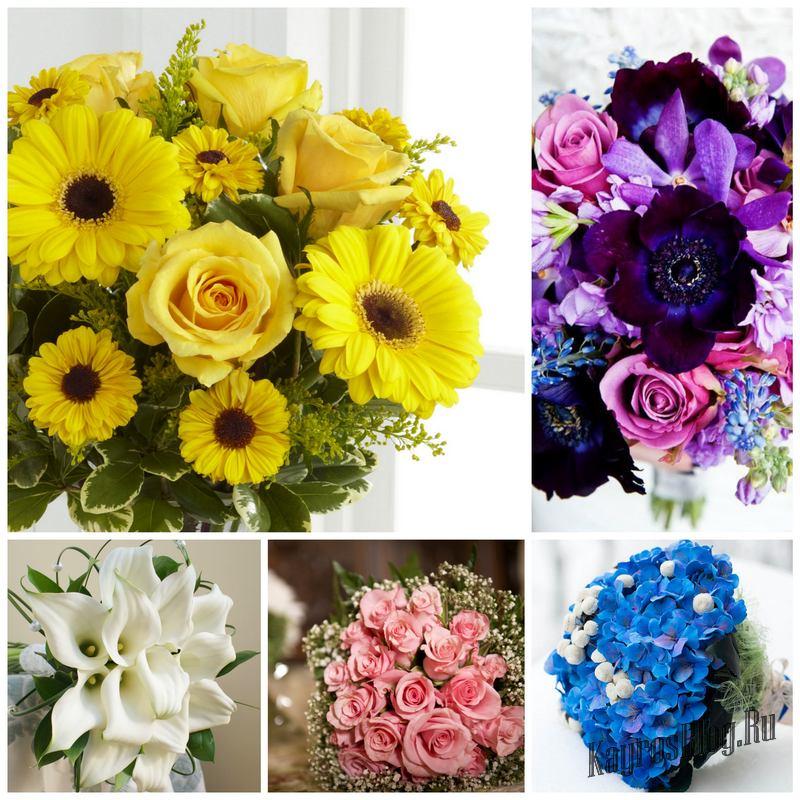 Что обозначает цвет цветов - учим язык цветов