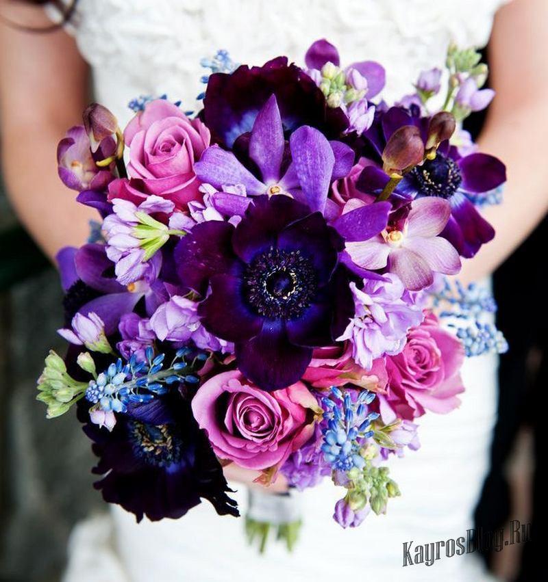 Фиолетовый - дружба