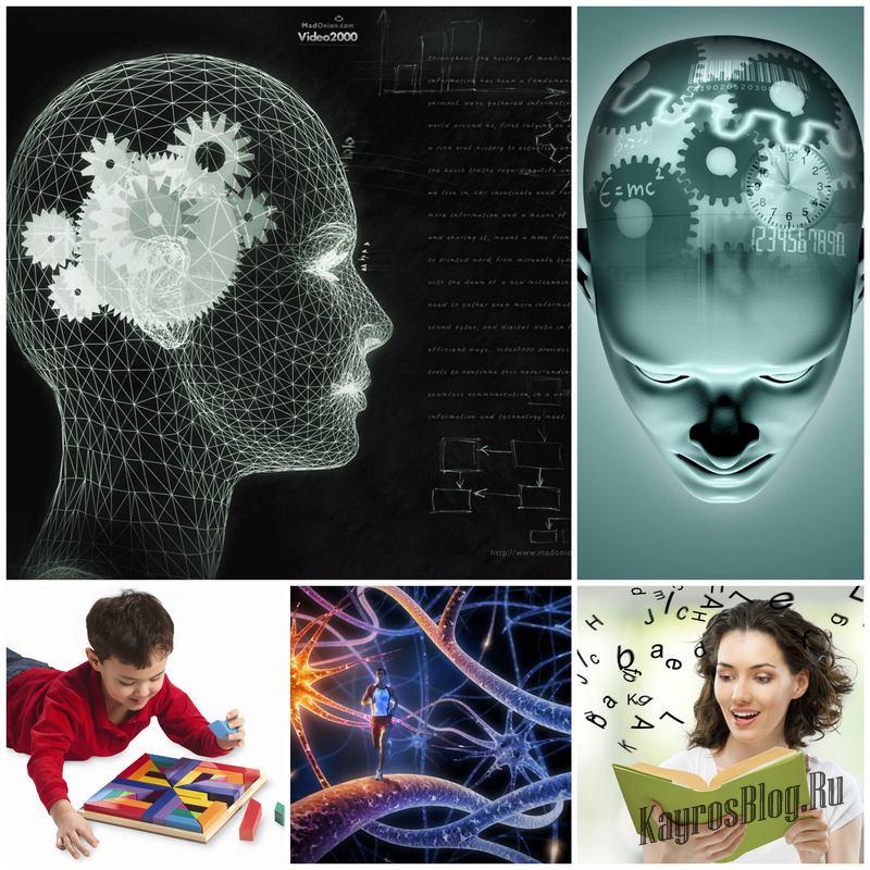 Как активизировать работу мозга и развить логику?