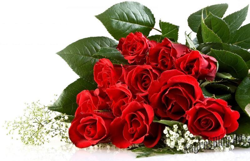 Красный - любовь